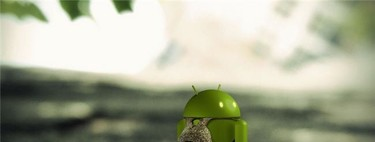 Android is not for