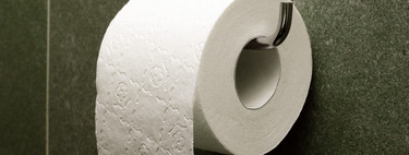 Everyone criticizes plastic, but nobody remembers toilet paper: because of it we are destroying forests around the world