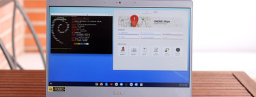 This is how to use Linux on Chrome OS: full integration for a platform that earns integers with Open Source software