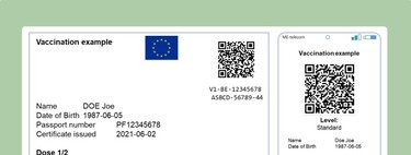 The Digital Green Certificate is now official: the European Union presents its vaccination passport to be able to travel